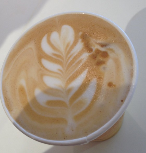 A rosetta by Shane. Courtesy of Kara Feigenbaum