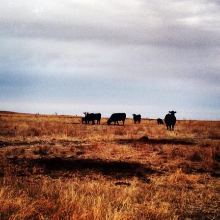 Somewhere in Kansas