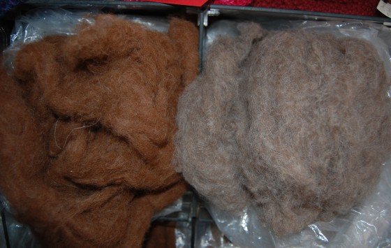 The llamas fiber that Karen uses to spin and weave.